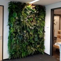 plantenwand_kunstplanten_kantoor2