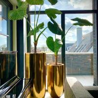pot-vaas-brons-met-taro-bladplant